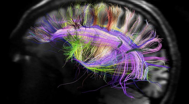 Image: Controlling the brain so memories, emotions and thoughts can be manipulated (Video)