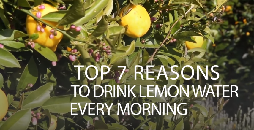 Top 7 reasons to drink lemon water every morning video - Seven reasons to make the bed every morning ...