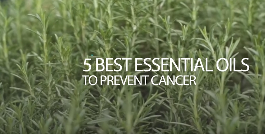 Image: 5 Best Essential Oils to Prevent Cancer (Video)