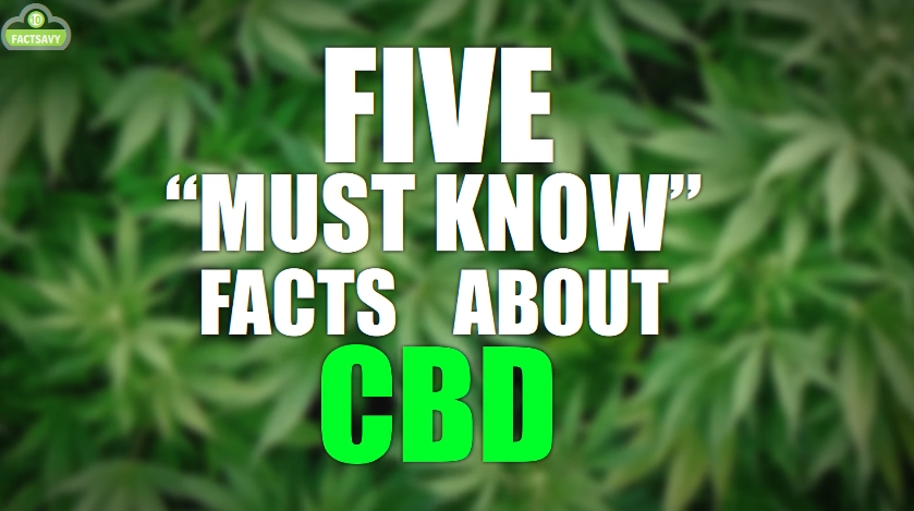 Image: 5 Must Know Facts About CBD (Video)
