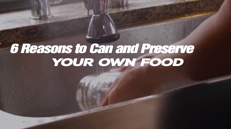 Image: 6 Reasons to Can and Preserve Your Own Food (Video)