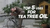top 5 tea tree oil