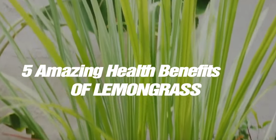 Image: 5 Amazing Health Benefits of Lemongrass (Video)