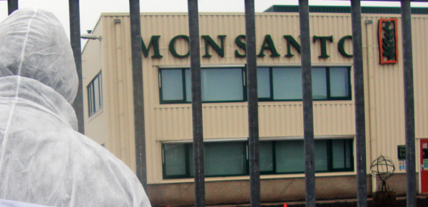 Image: Did Monsanto Employ an Army of Trolls to Silence Online Dissent? (Video)