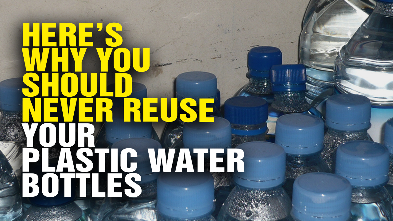 Should You Reuse Plastic Bottles?