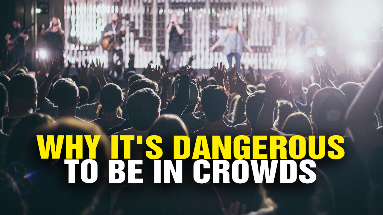 Image: Why It's Dangerous to Be in CROWDS (Video)