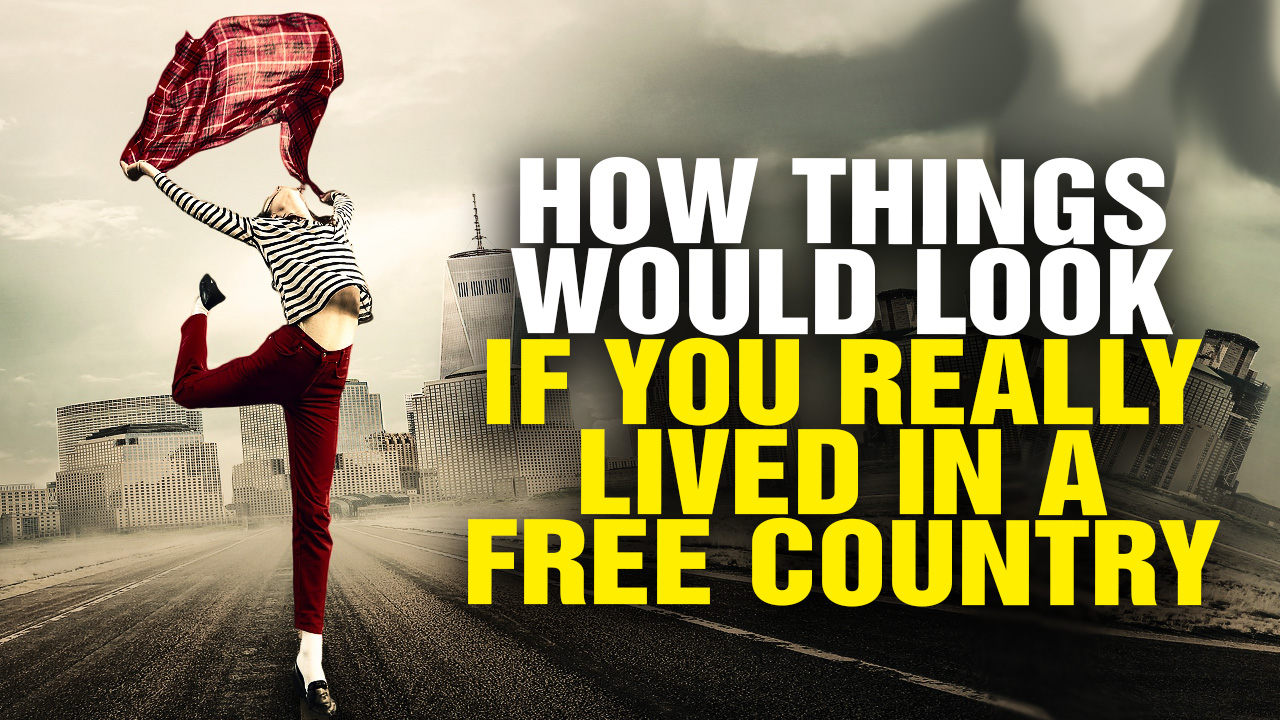 Image: How Things Would Look If You REALLY Lived in a Free Country (Video)