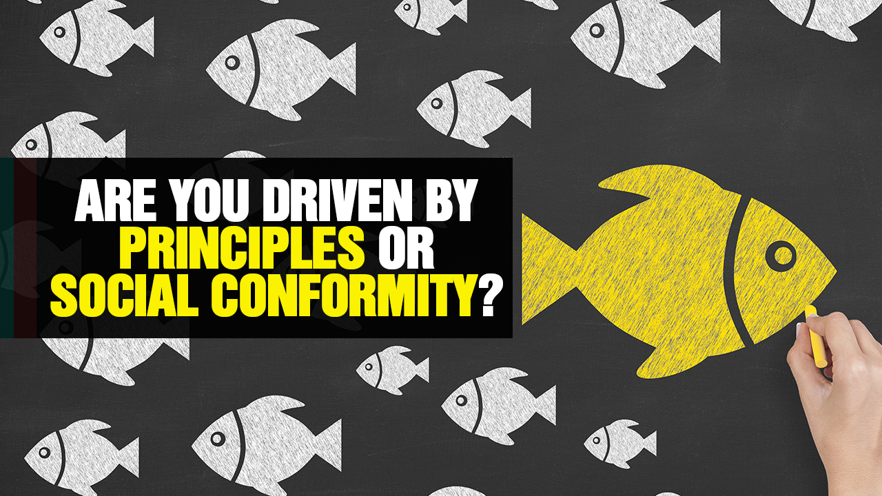 Image: Are You Driven by PRINCIPLES or SOCIAL CONFORMITY? (Video)